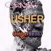 Usher - Crash (GingerBeats Remix)
