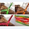 Colour coded collars and leashes coming soon