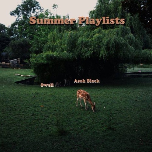 Asoh Black - Summer Playlists (Prod. by swell)
