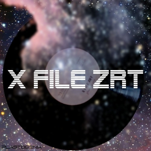 X FILE ZRT