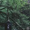 Псы Всегда Попадают В Рай (Feat. Acid Drop King) (Prod. By FrozenGangBeatz)