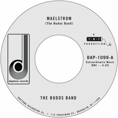 "The Budos Band ""Maelstrom"" b/w ""Avalanche"""