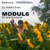Baltimora-TARZAN BOY (DJ Maxi Mix MODUL6)