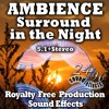 2496sfx SurroundInTheNight DEMO - STEREO