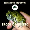Frogs Of Quebec - Frog, Toad & Tree Frog Sound Effects Library