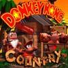 Bonus Room Blitz - Donkey Kong Country