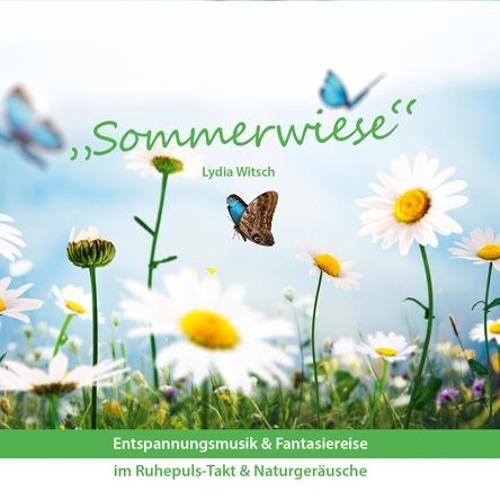 Vorschau - Clip - Sommerwiese - Aktuell