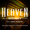 Ridney ft. Andy Muscat - Heaven (Disco Despair Remix)