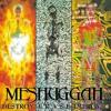 Meshuggah - Future Breed Machine (Instrumental Cover)