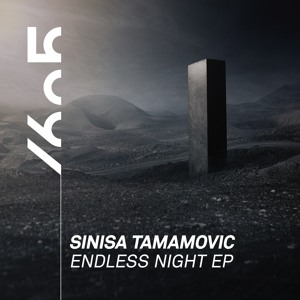 Sinisa Tamamovic - Endless Night (Original Mix)
