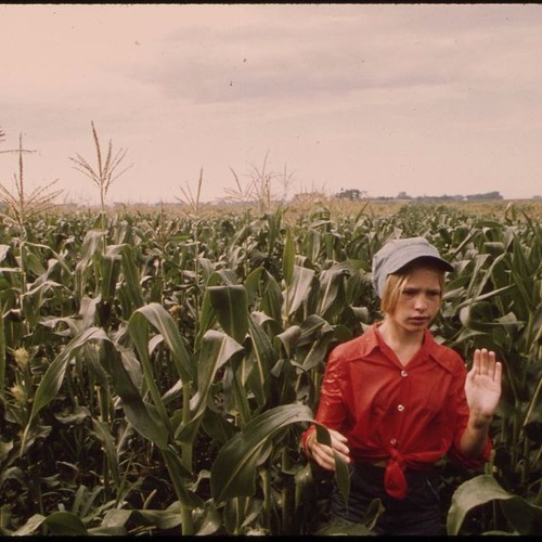 2 - Corn Controversy