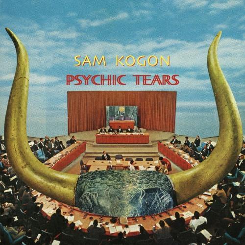 Sam Kogon - Something's Wrong