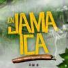 En Jamaica - Nelly Nelz ft Diaz Mafia, Tripeo el Desacatao