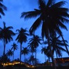 Melody Island Vol.2