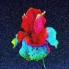 Flume Tiny Cities Feat.Beck (Remix)
