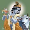 Sant Kabir Dohe