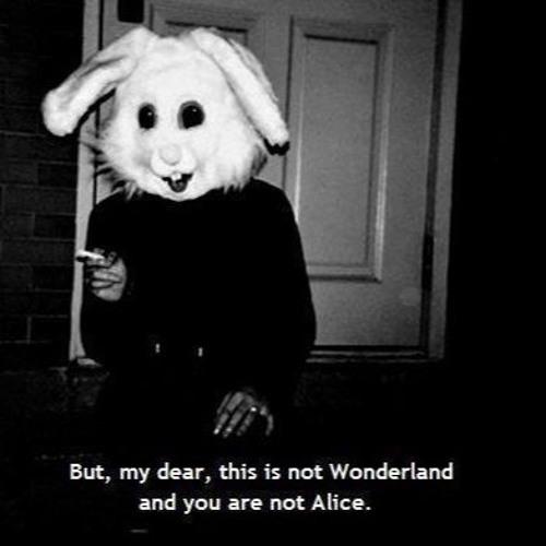Alice Im Wunderland Syndrom By Sarahschneider Sarah