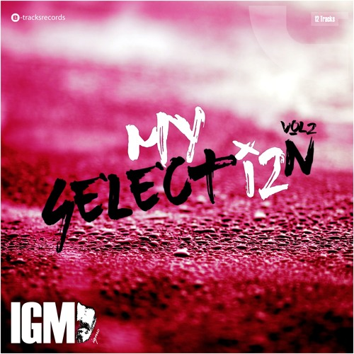 My Selection Vol.2 - IGMO