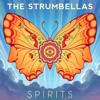 The Strumbellas - Spirits (FlowEX & Keljet,  Remix)