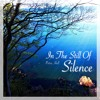 In The Still Of Silence