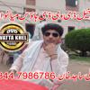 Pardesia Ameer Nawaz