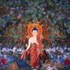 Il Dharma trascende la vita, insegnamenti di buddhismo tibetano di Lama Michel Rinpoche