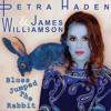 James Williamson & Petra Haden - Blues Jumped The Rabbit