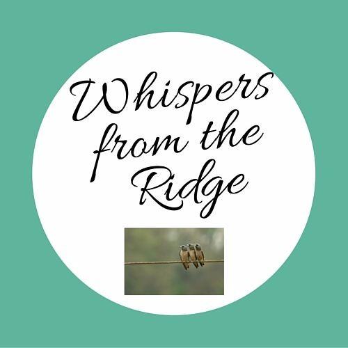 Before the Rain-a poem by Kiesha Shepard