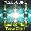 Download Winds of Night (peace chief) Mp3