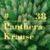 RIOTVAN RADIO #38   Panthera Krause