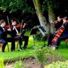"""String Quartet arr. """"Best day of my life"""" (American Author)"""