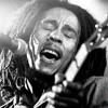 ONE LOVE DUB COVER ORIGINAL BY BOB MARLEY AND THE WAILERS
