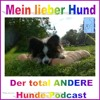 Mein lieber Hund - Epi 24 - Gesunder Hund - Interview mit Dr. Damiela Zurr mp3