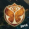 Ben Gold - Live @ Tomorrowland 2016 (Free Download)