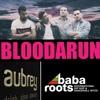 Download BLOODARUN for BABA ROOTS International Hip Hop & Dancehall Nites mixed by Oris Bloodarun Mp3