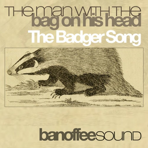 The Man With The Bag On His Head - The Badger Song (radio edit)