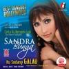 Sandra Bunga - Ku Terpanah Asmara mp3