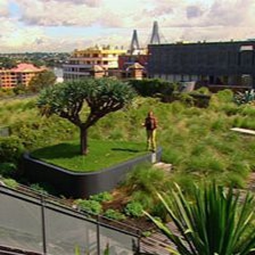 Greening our concrete jungles