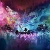 Bassnectar Remix / Rick Ross Everyday I'm Hustlin