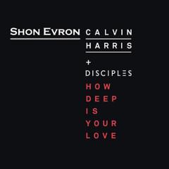 Calvin Harris & Disciples - How Deep Is Your Love Eden Shalev 105-130BPM (Shon Evron Edit)