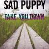 Sad Puppy - Take You Down (Radio Edit)