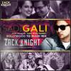 Sadi Gali - Bollywood To Miami Mix (DJJOhAL.Com)