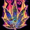 Weed Trance - Dj Garcia Set Mixing mp3