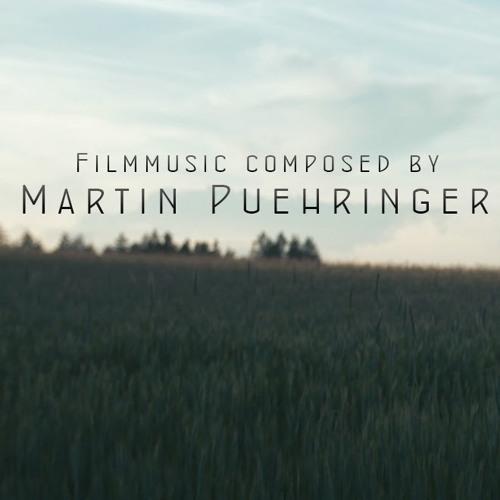 She Is Gone - Martin Puehringer