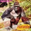 HARAMBE - TOUGH BOYZ