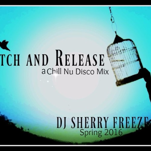 Catch & Release-A Chill NU DISCO MIX