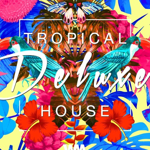Tropical Summer Upbeat Tropical House Background Music