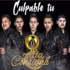 Culpable Tu - Alta Consigna (Estudio 2016) [BASS BOOST]