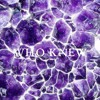 Who Knew [ Prod. luweewee ]
