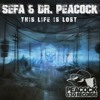 Dr. Peacock This Life Is Lost (& Sefa)
